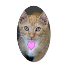 Yellow Tabby Kitten Pink Hea 35x21 Oval Wall Decal