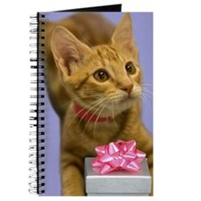 Tabby Kitten with Gift Birthday Journal