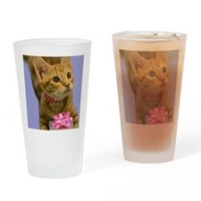 Tabby Kitten with Gift Birthday Drinking Glass