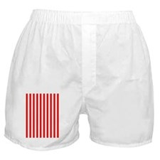 Red and White Striped Boxer Shorts