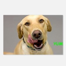Yellow Lab Yum Birthday C Postcards (Package of 8)