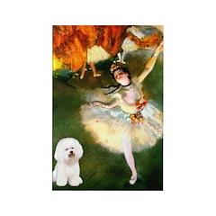 Ballet Dancer & Bichon Rectangle Magnet (10 pack)