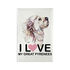 I Love my Pyr Rectangle Magnet