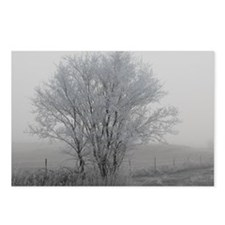 The Ice Tree Postcards (Package of 8)