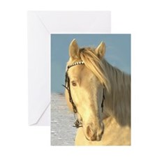 GreetingcardsClassicCreamChampagneTHW Stallion