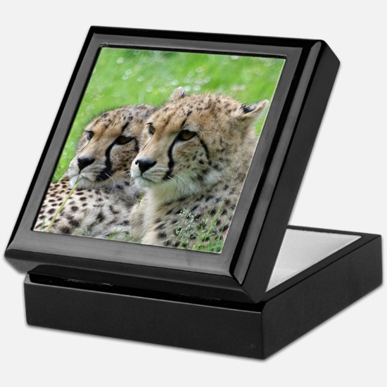 Cheetah009 Keepsake Box