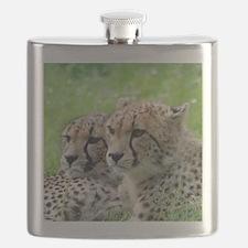 Cheetah009 Flask