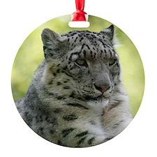 Leopard006 Ornament