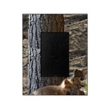 4 fox kits Picture Frame
