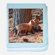 4 fox kits baby blanket