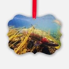 Rainbow Trout - Fly Fishing Ornament