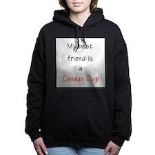bestfriendcanaan.png Hooded Sweatshirt