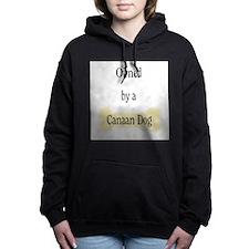 ownedcanaan.png Hooded Sweatshirt