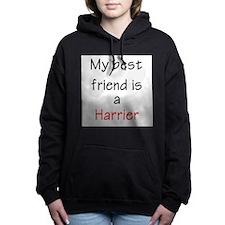 bestfriendharrier.png Hooded Sweatshirt