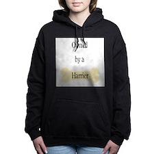 ownedharrier.png Hooded Sweatshirt