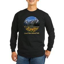 Grand Teton National Park T