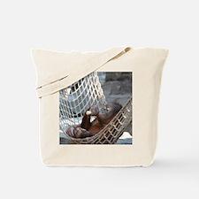 OrangUtan014 Tote Bag