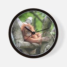 OrangUtan015 Wall Clock