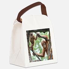 OrangUtan016 Canvas Lunch Bag