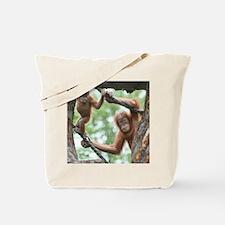 OrangUtan016 Tote Bag