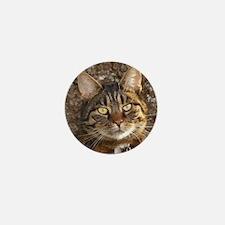 Cat002 Mini Button