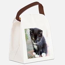 Cat003 Canvas Lunch Bag