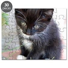 Cat003 Puzzle