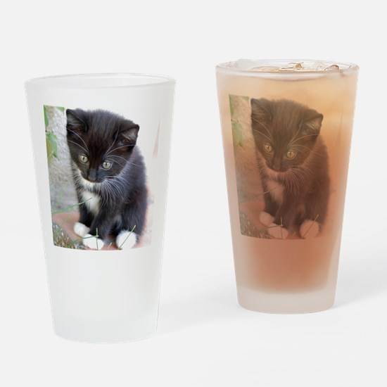 Cat003 Drinking Glass