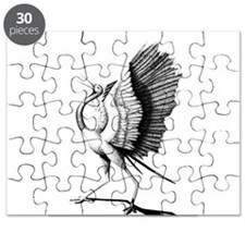 crane Puzzle