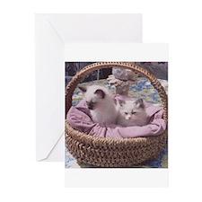 Ragdoll Kittens Greeting Cards (Pk of 10)