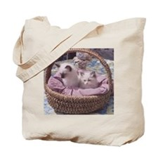 Ragdoll Kittens Tote Bag