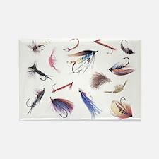 Fly Illustrator Flies Magnets
