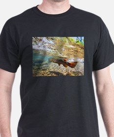 Brown Trout T-Shirt