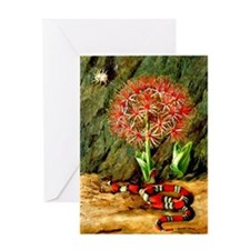 Marianne North: Flor Imperiale, Cora Greeting Card