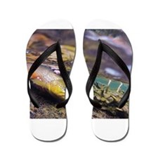 Brown Trout - Catch and Release Flip Flops