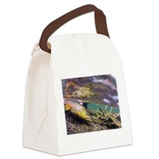 Brown Trout - Catch and Release Canvas Lunch Bag