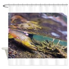Brown Trout - Catch and Release Shower Curtain