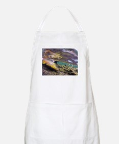 Brown Trout - Catch and Release Apron