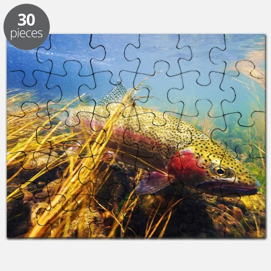 Rainbow Trout Puzzle