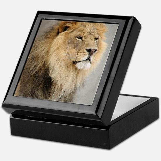 Lion Lovers Keepsake Box