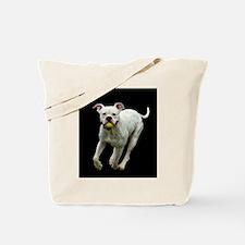 Got Ball? Tote Bag