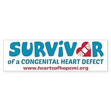 Hearts Of Hope MI: Survivor of a  Bumper Sticker