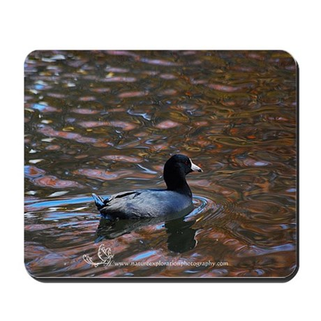 Groovy Coot Mousepad