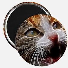 Cat011 Magnet