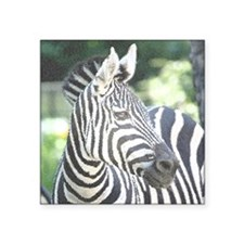 "Zebra008 Square Sticker 3"" x 3"""