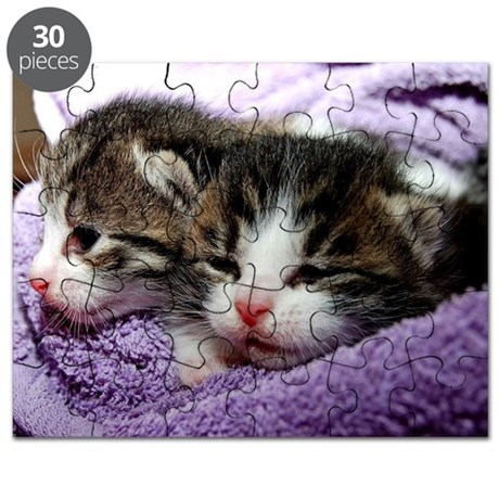 Kittens, Cuddly Kittens Wrapped in Blanket Puzzle