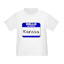 hello my name is karissa T