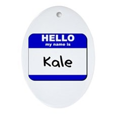 hello my name is kale  Oval Ornament