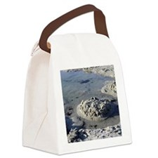 Beach004 Canvas Lunch Bag