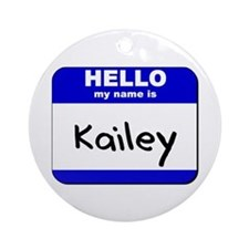 hello my name is kailey  Ornament (Round)